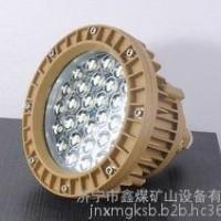 LED防护灯,LED防护灯**,LED防护灯现货供应鑫煤